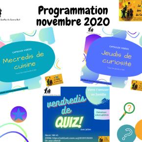Programmation novembre 2020