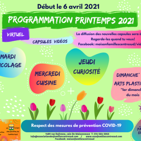 Programmation Printemps 2021. Virtuel